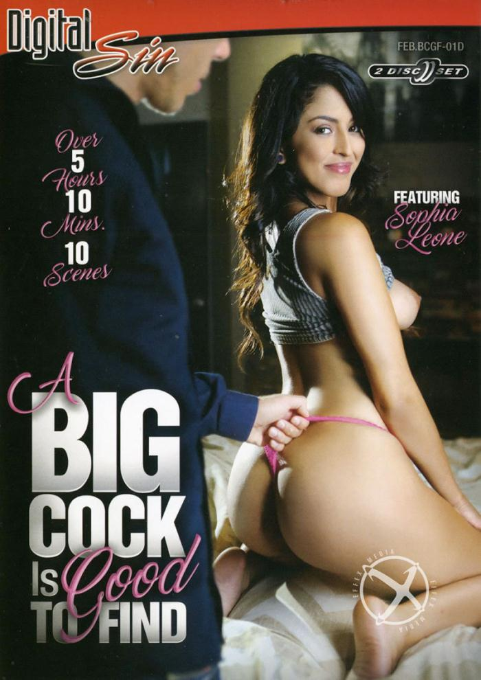 A Big Cock Is Good To Find  [DVDRip 406p]