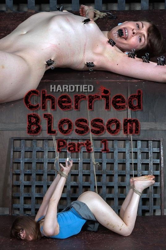 Blossom - Cherried Blossom Part 1 [HardTied] 720p