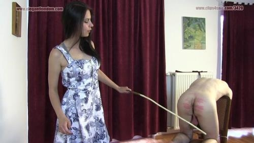 Caning With Lucy (21.02.2017/ElegantFemdom.com / Clips4sale.com/FullHD/1080p)