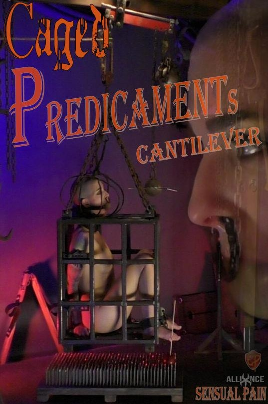 Caged Predicaments - Cantilever - SensualPain.com (FullHD, 1080p)