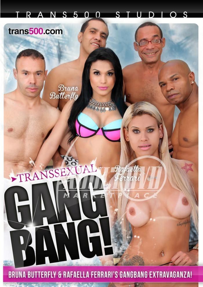 Transsexual Gangbang! [WEBRip/SD 406p]