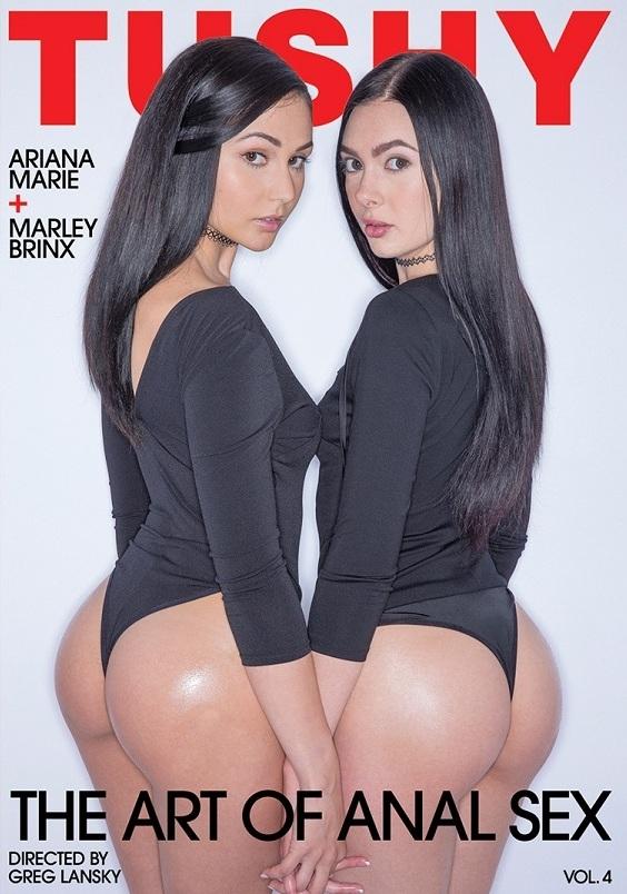 The Art of Anal Sex 4 [DVDRip 404p]