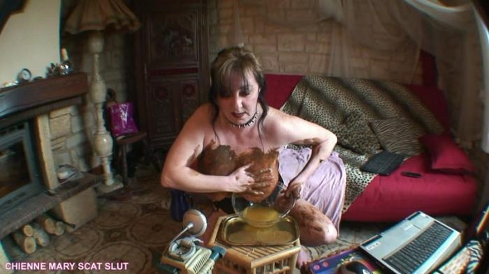 Webcam scat show - French scat slut (Scat Porn) FullHD 1080p