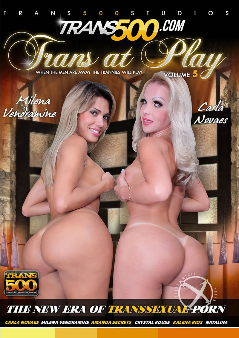 Trans At Play Volume 5 [WEBRip/SD 480p]