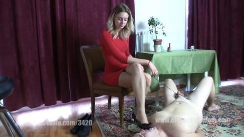 Elegantfemdom.com / Clips4sale.com [Lady Jessica - Shoe Lick With CBT] FullHD, 1080p