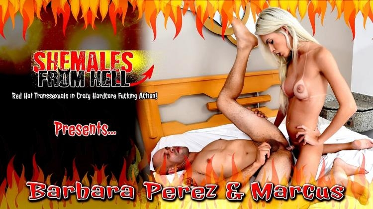 Barbara Perez and Marcus - Shemale on male (May 19, 2017) [ShemalesFromHell / FullHD]