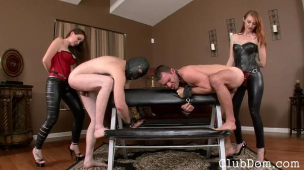 Owning his Bitch Ass - Female Domination (HD, 720p)