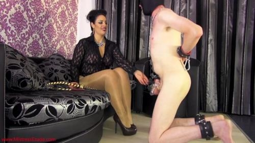 MistressEzada.com [Mistress Ezada - Not worthy to worship my feet yet] HD, 720p