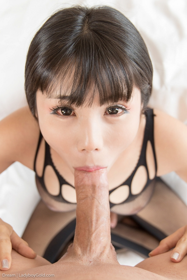 Dream - Crotchless Bodysuit Handjob [HD 720p] - LadyboyGold.com