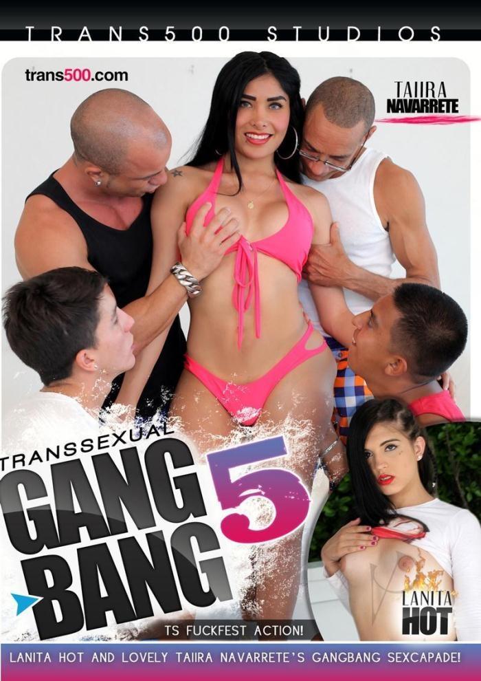 Transsexual Gangbang 5 [WEBRip/HD 720p]
