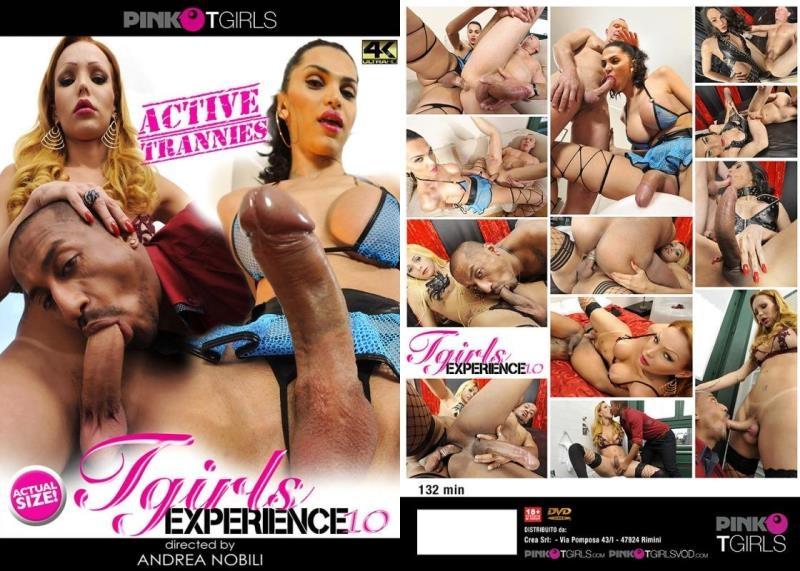 PinkOTgirls.com: Tgirl Experience 10 [HD] (2.36 GB)