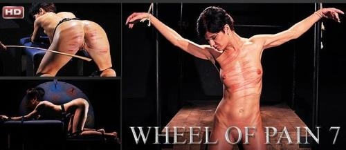 Wheel of Pain - Part 7 [FullHD, 1080p] [Mood Pictures, Elite Pain]