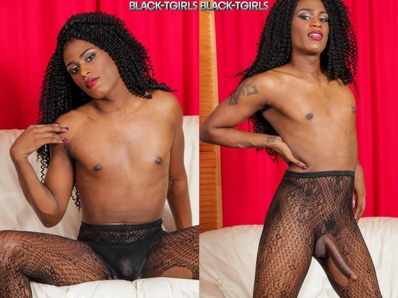 Black-TGirls.com: Lola Long - Lola Long Jacks Her Huge Cock! [HD] (394 MB)