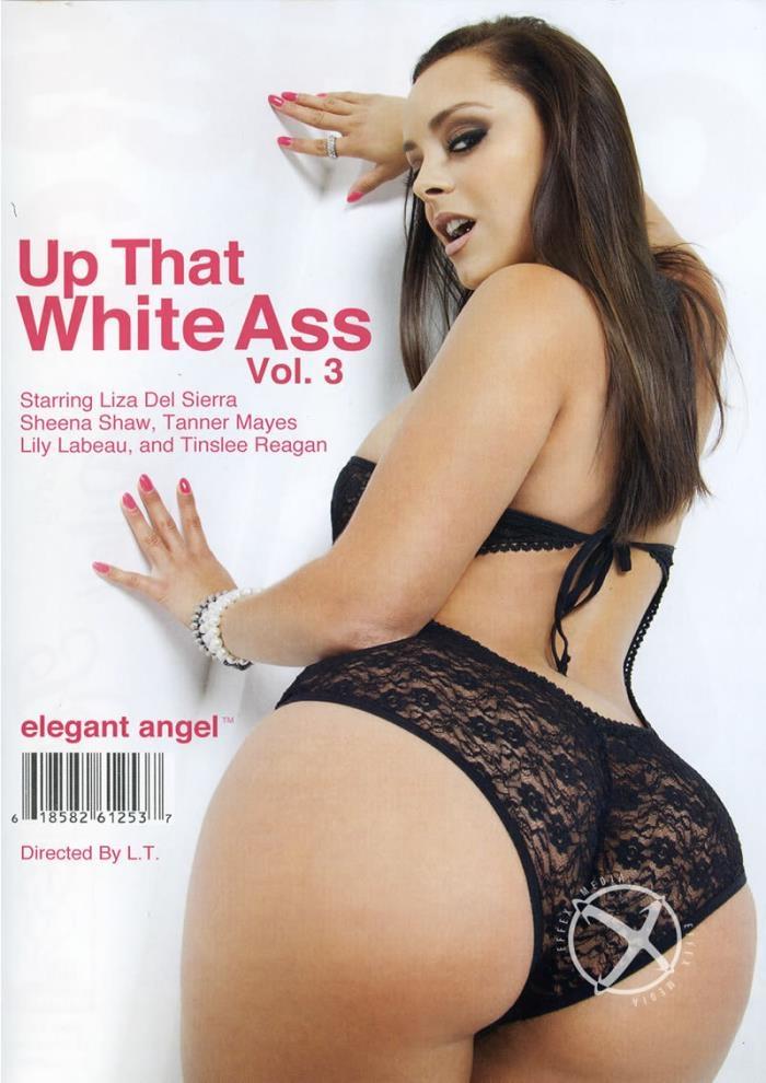 Up That White Ass 3 [WEBRip/SD 544p]