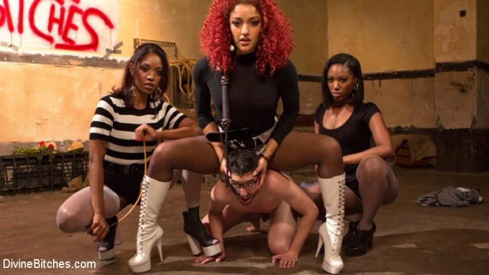 DivineBitches - Jay Wimp, Daisy Ducati, Lotus Lain, Chanell Heart in Three The Hard Way (SD 540p)