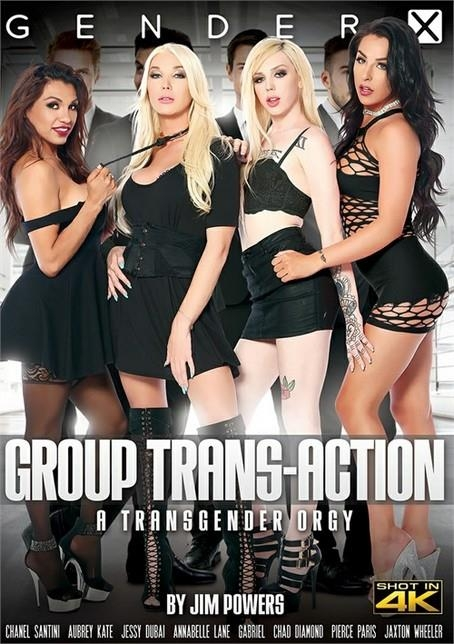 Jim Powers, Gender X: Group Trans-Action (SD/540p/1.60 GB) 19.06.2017