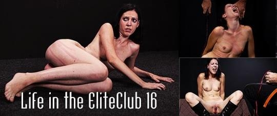 Mood Pictures, Elite Pain: Zseby - Life in the Elite Club 16 (SD/540p/416 MB) 06.06.2017
