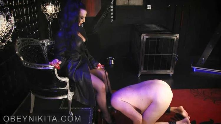 Mistress Nikita - Cum On My Wolfords [Clips4sale, ObeyNikita / SD]