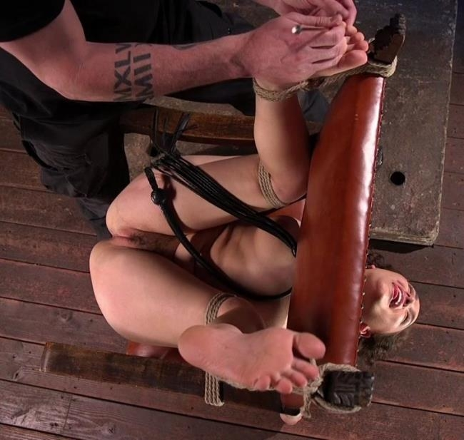 Gabriella Paltrova - Super Slut is Subjected to Brutal Torment and Bondage! (BDSM) - HogTied/Kink   [SD 540p]