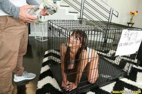 MilfHunter.com / RealityKings.com [Olivia Wilder - Caged Pussy] SD, 432p
