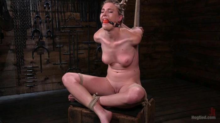 Ashley Lane - Bondage [HD 720p] HogTied.com