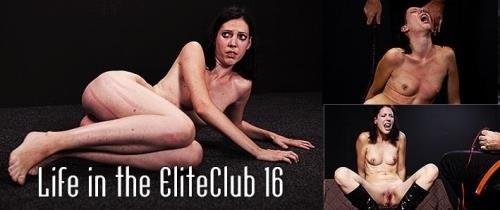 Zseby - Life in the Elite Club 16 [SD, 540p] [Mood Pictures, Elite Pain]