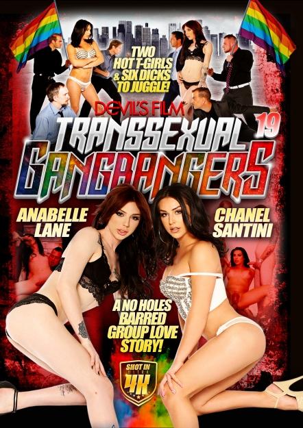 Transsexual Gang Bangers 19 [WEBRip/SD 540p]