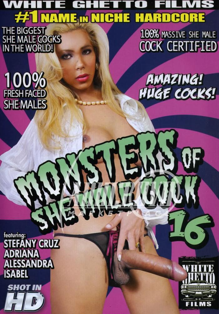 Monsters Of She Male Cock 16 [WEBRip/SD 480p]