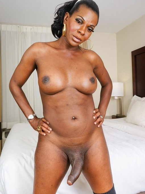 Black-TGirls - Cinnamon Capri - Amber Strokes And Cums [HD 720p]