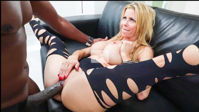 Alexis Fawx - Busty MILF Fawx 11 Interracial Inches [EvilAngel] 400p
