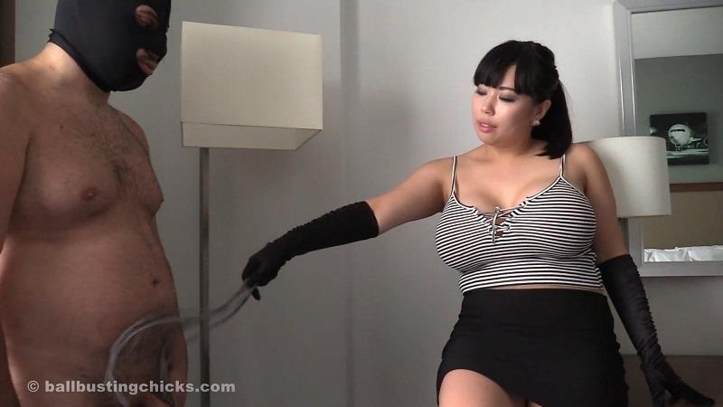 BallBustingChicks.com / Clips4Sale.com: Tigerr Benson - Big tits and a pathetic loser [FullHD] (437 MB)