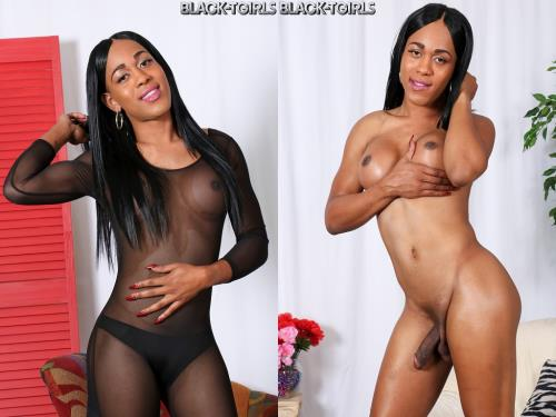 Miami Bombshell Star The Goddess! [HD, 720p] [Black-TGirls.com]