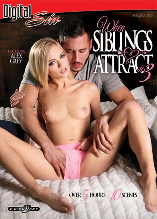 When Siblings Attract 3 Disc 1 [DVDRip/406p/1.46 Gb] Digital Sin