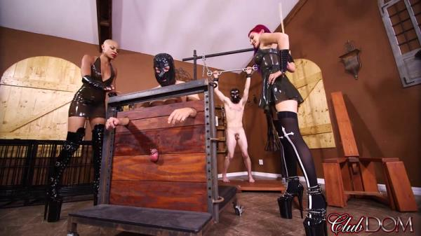 Female Domination - Caned-Meat [FullHD, 1080p]