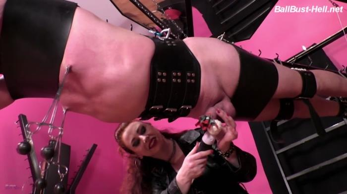 Mistress Lady Renee - Suspended and forced (BallBust-Hell) FullHD 1080p