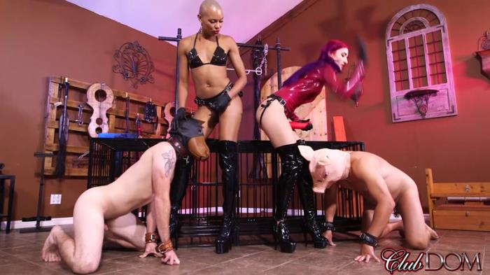 Female Domination - Quandisa & Amadahy's Pig Roast [FullHD, 1080p]