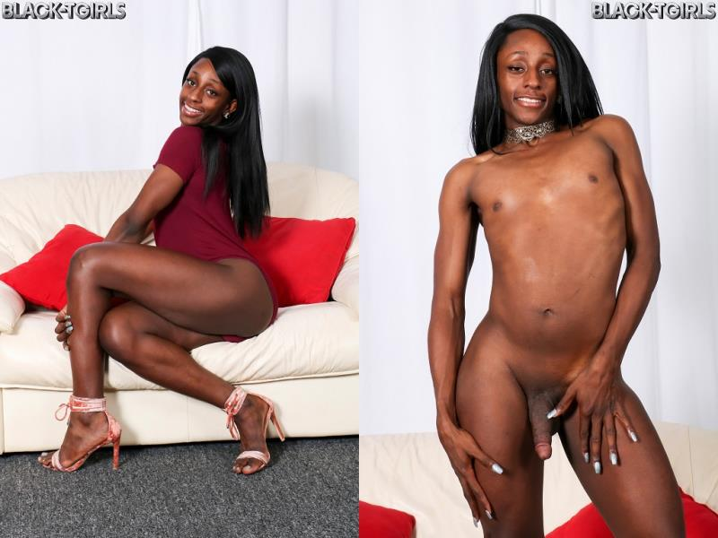 Black-TGirls.com: Alanna Elu Cums For You! [HD] (832 MB)