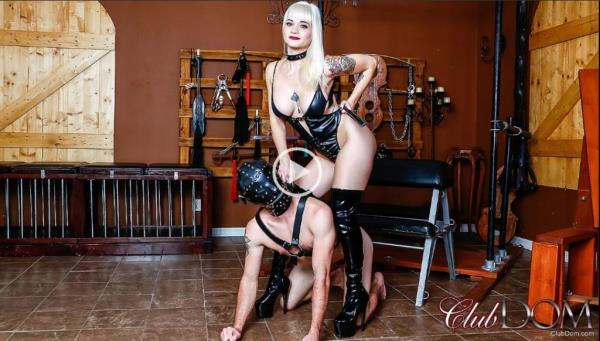 Female Domination - Dahlia Rain Tenderized The Meat [FullHD, 1080p]