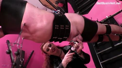 Mistress Lady Renee - Suspended and forced [FullHD, 1080p] [BallBust-Hell.net]