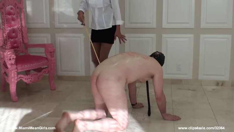 MiamiMeanGirls.com: Failure-Beatingonly [HD] (211 MB)