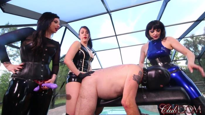 Over-Powered by Femdom Cock FullHD 1080p