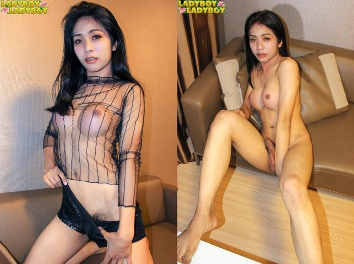Alice Her Hotness Returns! (LadyBoy-LadyBoy) HD 720p
