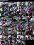 GoldenShowerPower / SinDrive:  Tera Joy(Pissing) - Piss In The Park! Lesbos Fill Their Faces With Piss and Attack That Clit!  [FullHD 1080p]