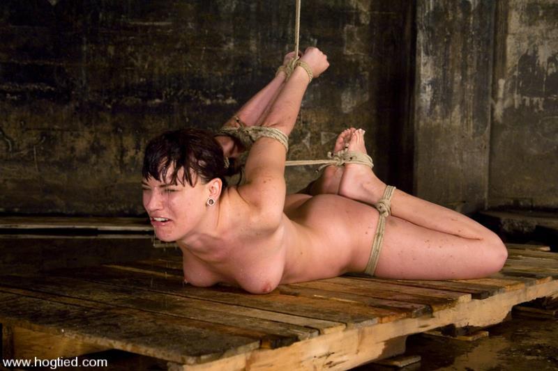 Hogtied.com / Kink.com: Dana DeArmond, is still one of toughest bondage models of our lifetimes [HD] (999 MB)