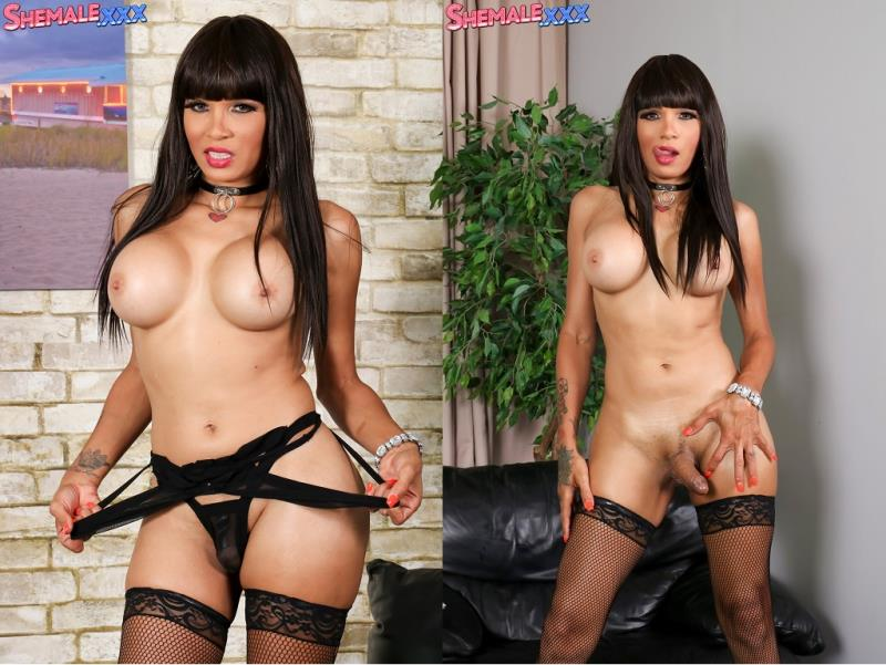SheMale.xxx: Jennifer Revlon / Hot As Ever Ms. Jennifer Revlon! [HD] (562 MB)