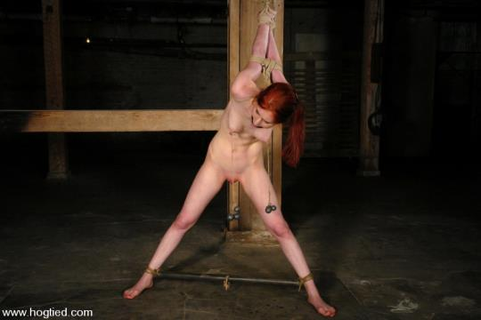 Hogtied, Kink: Calico Lane - Calico (HD/720p/1.19 GB) 23.09.2017