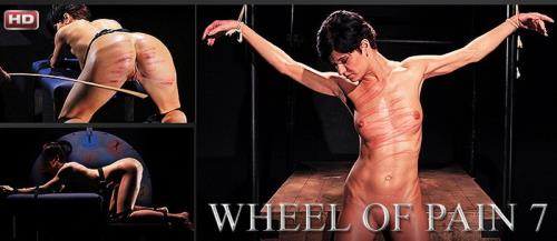 Wheel of Pain 7 - Torture (SiteRip/ElitePain/FullHD1080p)