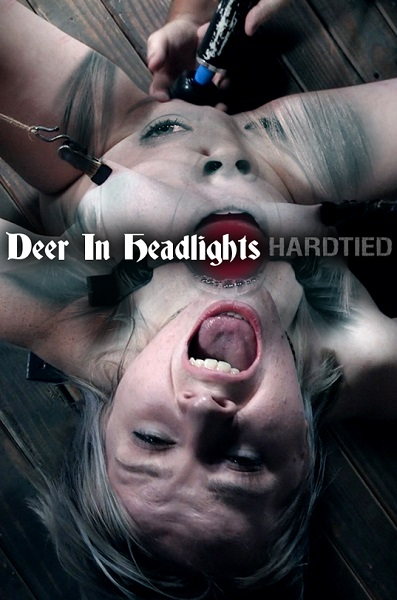 Bambi Belle - Deer In Headlights - - HardTied/IntersecInteractive [HD 720p]