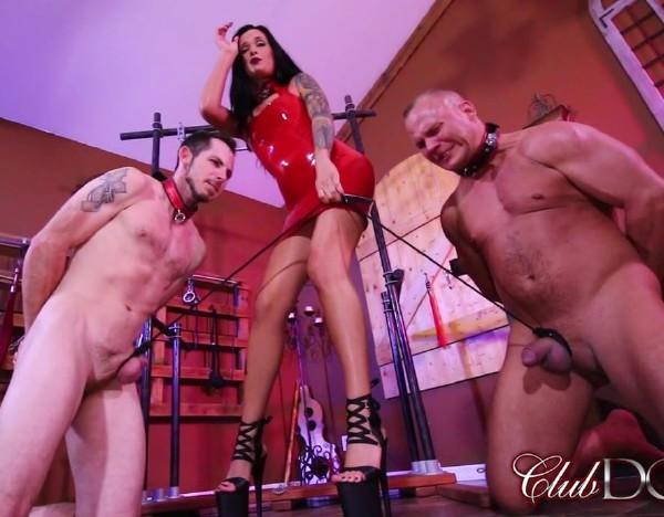 ClubDom.com: - Mistress Maria - - Mistress Marias Tug Of Balls (2017) HD - 720p