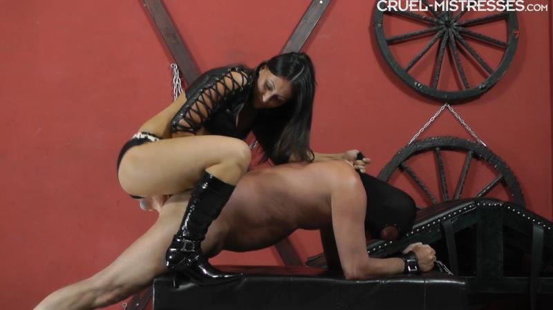 CruelAmazons.com / Cruel-Mistresses.com: Mistress Sophie - Inside His Ass [FullHD] (612 MB)